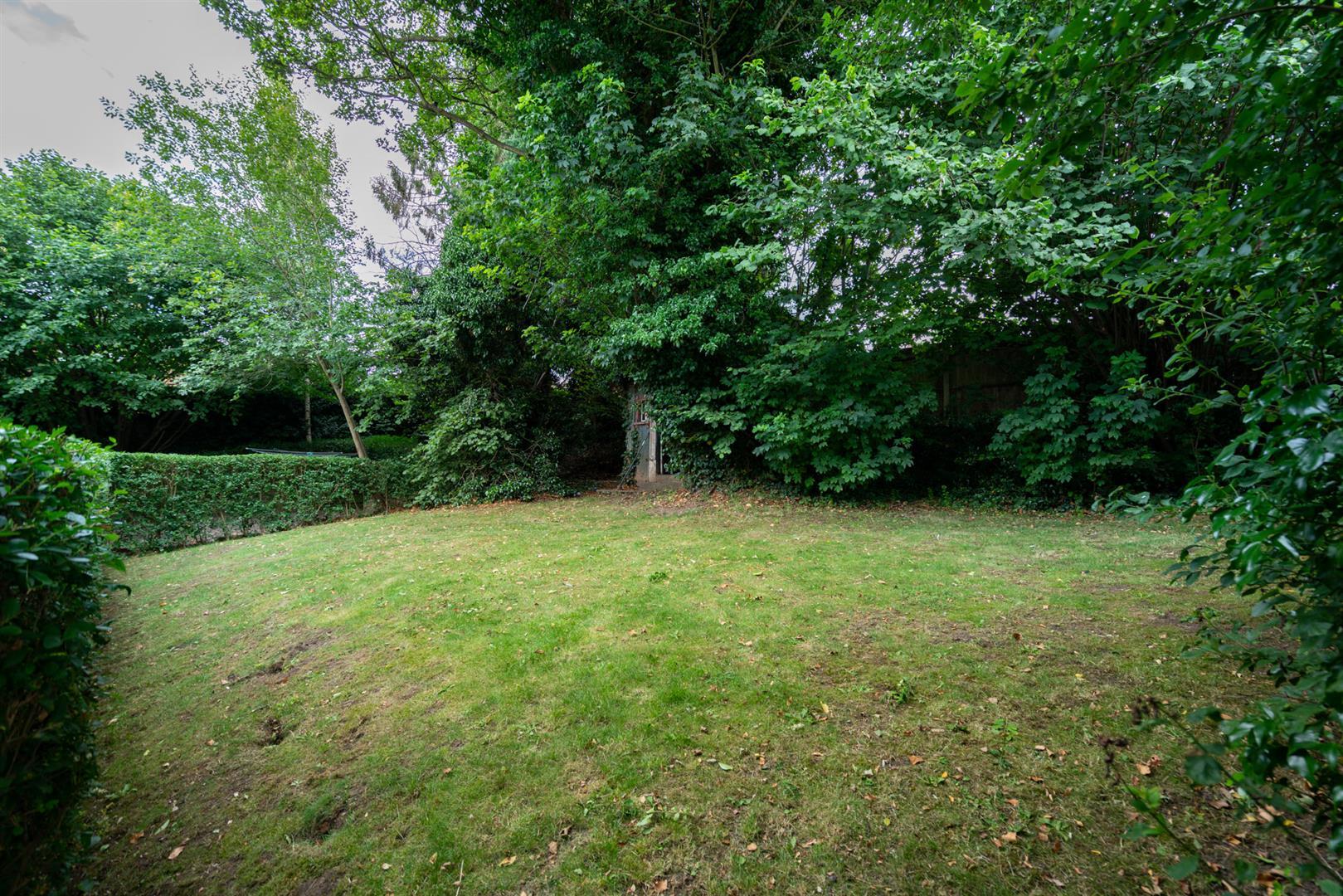 10-Seven-Close-2578-  garden area.jpg