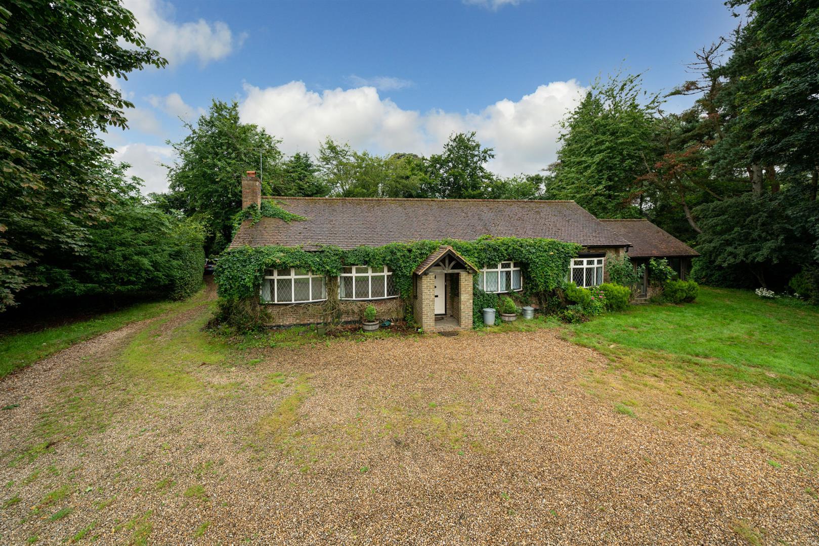 Old-Cottage-Paddock-4 - main close shot.jpg