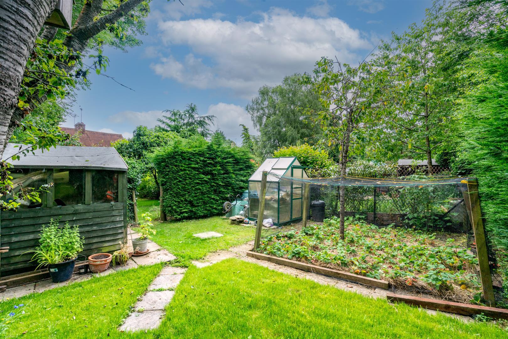 14-Chesham-Road-5 (1) - top garden veg plot.jpg