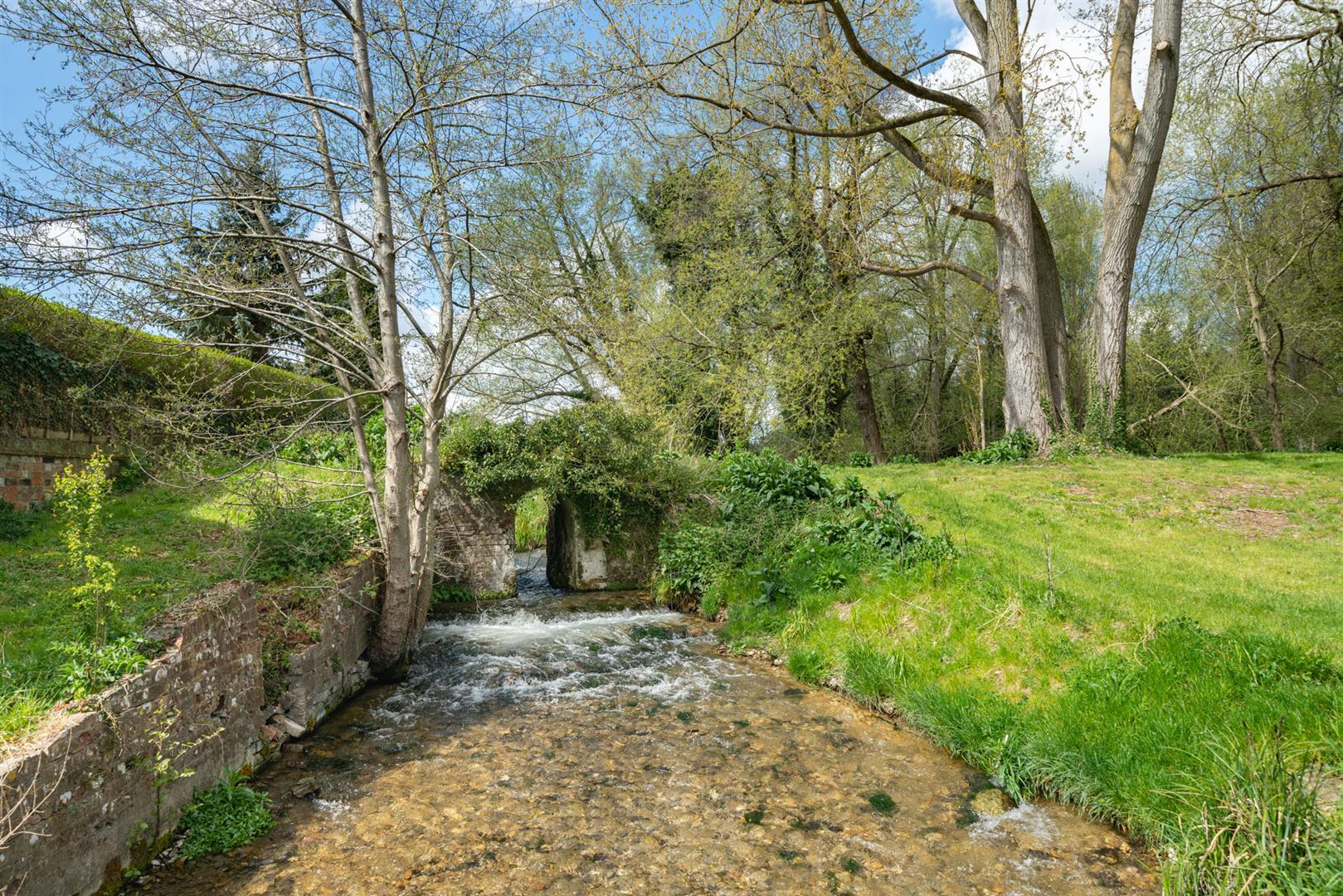 Woodlands-stream .jpg