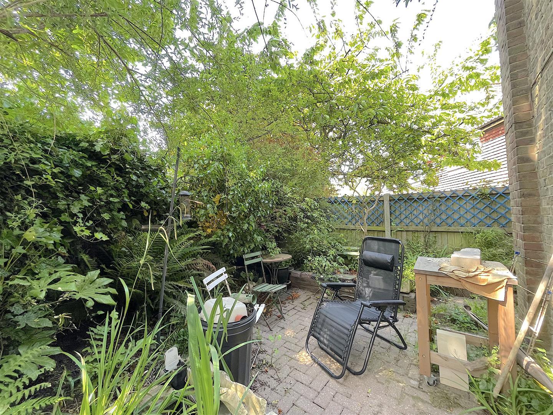 Garden (1).jpeg