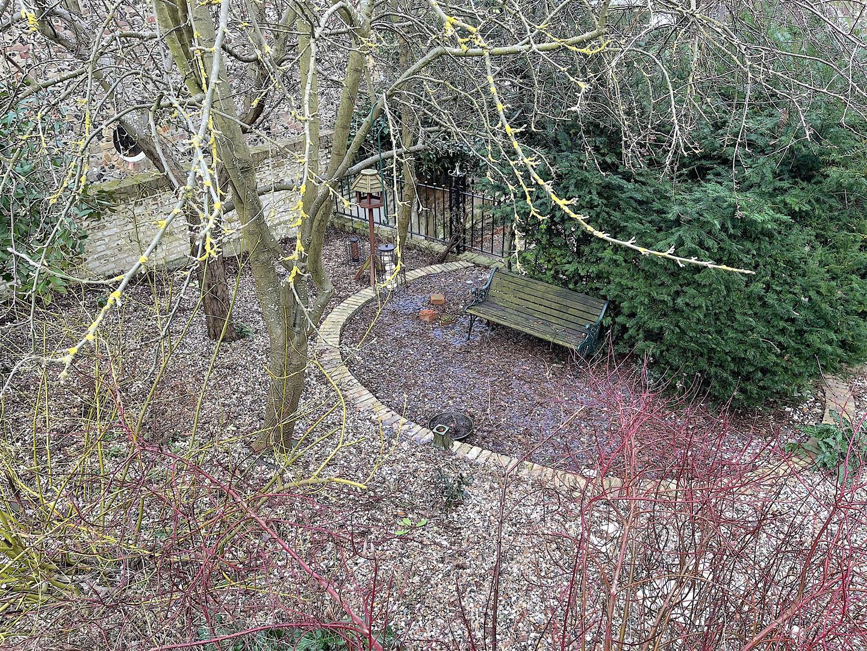 Communal Garden.jpeg