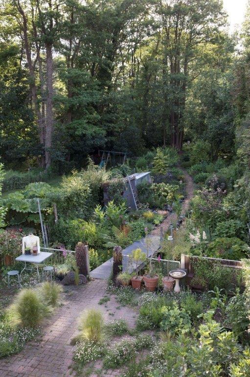 FernAlder_Garden_a6[1].jpg