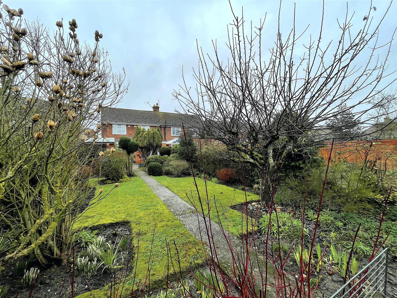 Garden (6).jpeg