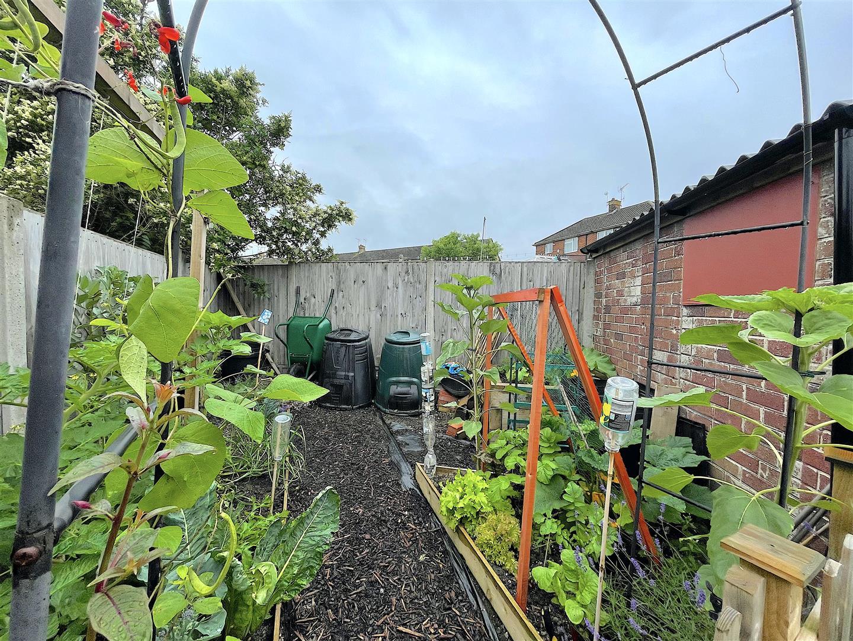 Garden (5).jpeg
