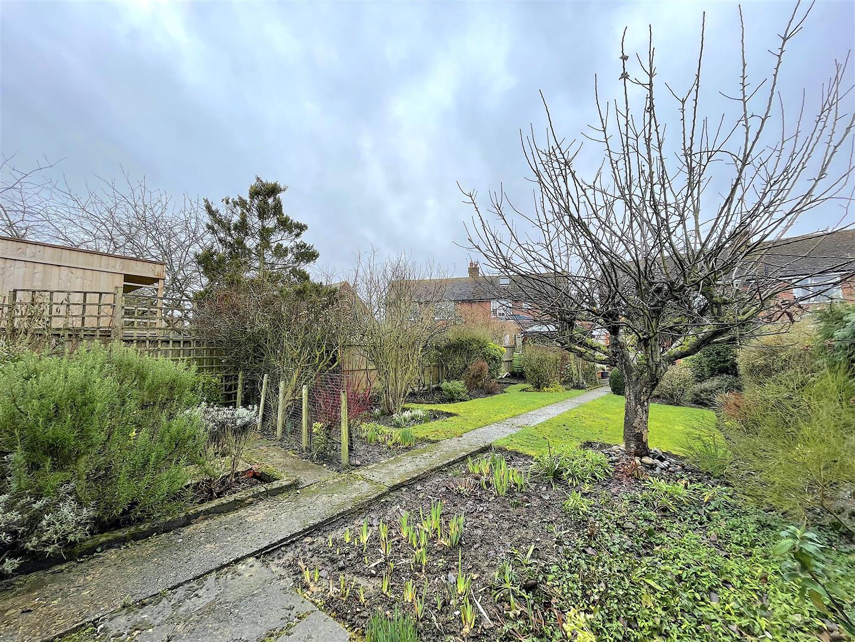 Garden (3).jpeg