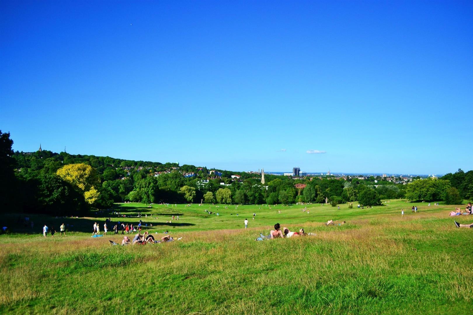 Hampstead Heath - Sunny.jpg